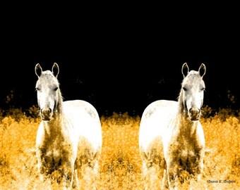 Twin White Horses, Southwestern Photomontage Art, Texas, Surreal Fantasy, Golden Yellow, Wall Hanging, Home Decor, Giclee Print, 8 x 10