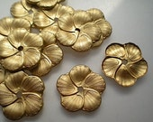 12 brass mirror rosettes, No. 8
