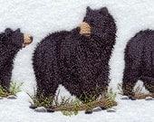 American Black Bear Trio Embroidered Terry Kitchen Towel Bathroom Hand Towel