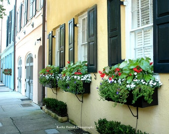 Charleston Photography, Charleston Rainbow Row, Charleston Window Boxes, Charleston South Carolina Photos, Rainbow Row Flower Window Boxes