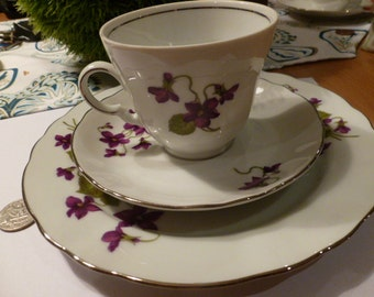 Cup Saucer and Cakeplate Violet Flowers made in Bavaria by Winterling Best Condition Collecter Set