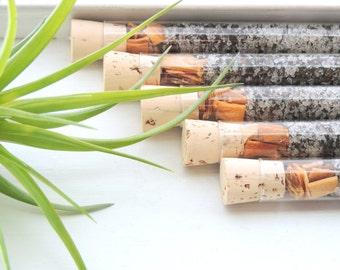 Organic & All Natural Mango Peppermint Herbal Bath Salt Test Tubes. (Fortify Bath Affirmations) Holiday, Wedding, Eco, Spa, Luxury Gift Set.