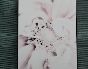 Original Photograph WHITE DAHLIA Hard Plastic iPhone Cover 4S 4