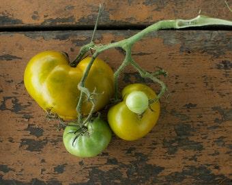 Lime Salad Tomato Seeds - Naturally and Organically Grown Rare GreenTomato Seeds