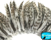 Rooster Feathers, 4 Inch Strip - NATURAL GREY Chinchilla Strung Rooster Hackle Feather: 659