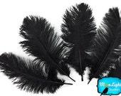 """Plumes d'autruche, 10 pièces - 8-10"""" autruche noir terne blanchis plumes : 2199"""