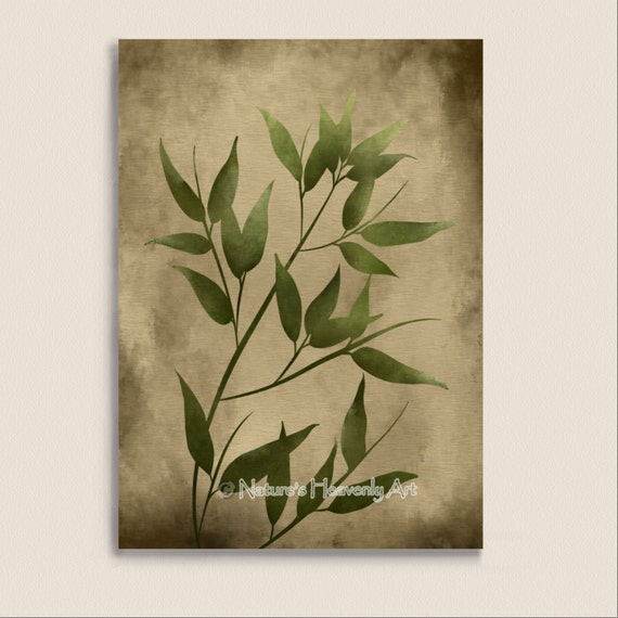 Green leaves bamboo japanese wall decor 5 x 7 print for Asian wall decoration