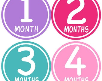Baby Month Stickers Baby Girl Monthly Stickers Hot Pink First Year Stickers Month Stickers Baby Shower Gift Photo Prop Jessica