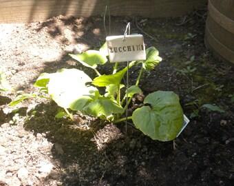 Zucchini Plant Marker