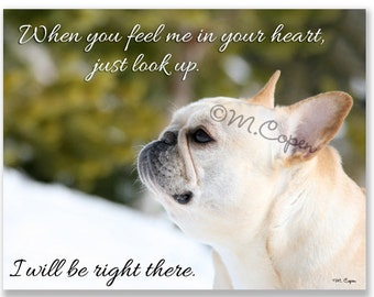 When you feel me in your heart, just look up. I will be right there. - Fawn French Bulldog - Set of 2 Cards