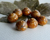 Czech Picasso Beads, Czech Glass Beads, Snail Beads, 12mm Brown & Mustard / Bronze Speckled Picasso, Lustered  (8pcs)