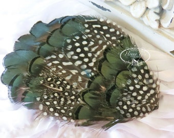 Combination Natural Green Lady Amherst Feathers with Natural Guinea Feathers (FPI114) RingNeck Pheasant Feather Pad -Millinery -Applique