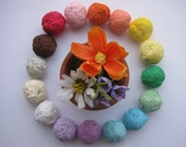 RESERVED- Add on 100 Wildflower Seed Bombs