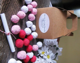 Valentine's Special--Wildflower seed bomb gift/favor- small gable box packaging