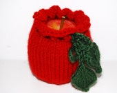 Valentine gift Fruit Cozy red  Apple Holder small Bag Lunch Box hand knit  Gift Get Well   Ready to ship from Colorado.  photo prop.