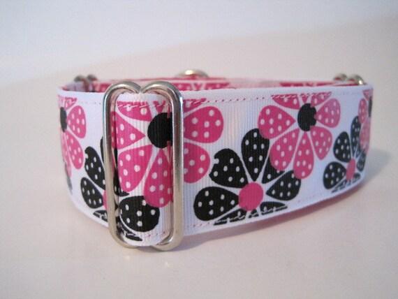 "1.5"" Martingale Collars, Hot Pink Martingale Collar, Custom Dog Collar, Daisy, Funky, Polka Dot, Greyhound Collar, Pink Dog Collar"