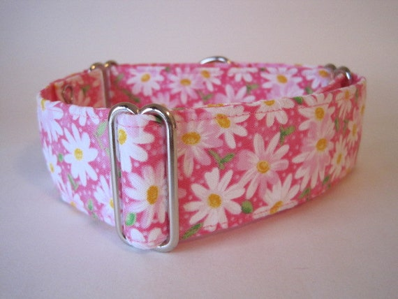 2 Inch Martingale Collar, Pink Martingale Collar, Pink Dog Collar, Daisy, Floral, Greyhound Collar, Daisy Dog Collar, Greyhound Martingale