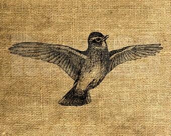 INSTANT DOWNLOAD - Flying Bird Vintage Illustration - Download and Print - Image Transfer - Digital Sheet by Room29 - Sheet no. 960