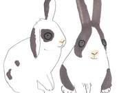 Rabbits Print Bunnies Pet Black and White Pink