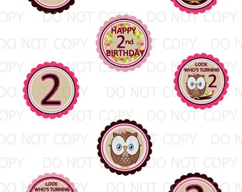 Printable DIY Owl Second 2nd Birthday Theme Cupcake Toppers - Pink