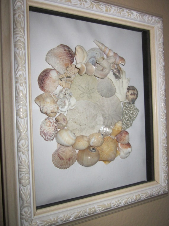 seashell collage shadow box frame nautical natural beach decor off white designer