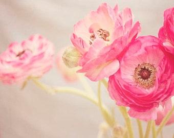 "Pink Ranunculus Photograph, Pink Nursery Decor, Pastel Floral Print, Shabby Chic, Flower Photography, ""Pretty Pink Ranunculus"""