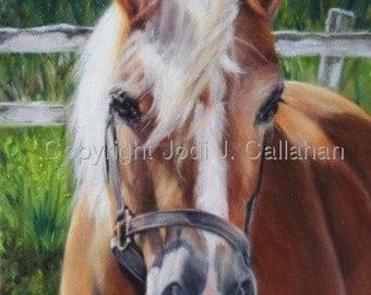 CUSTOM HORSE PORTRAITS- an original oil painting by Jodi J. Callahan