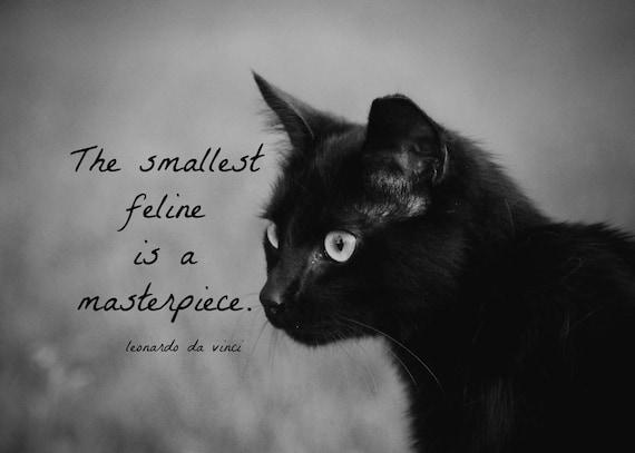 items similar to print black cat quote black white