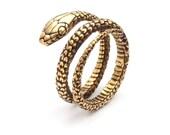 Snake Weights - Ouroboros Earrings -Gauged Earrings