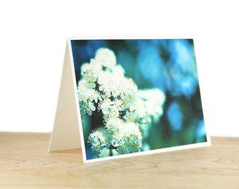 Greeting Cards Blank Photo Card Note Card - Set of 3 Blank Photo Greeting Cards with Photographs of your choice