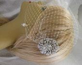 Birdcage Veil and a Bridal Hair Comb (2 Items)  Rhinestone Bridal Hair Comb, Weddings, Silver, Rinestone