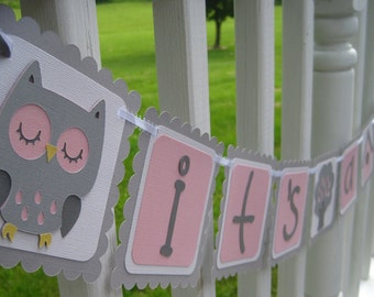 SWEET DREAMS OWL it's a girl Baby Shower Banner Made to Order
