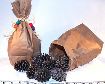 Foraging Bag o' Pinecones - Parrot Toys & Bird Toy Parts by A Bird Toy