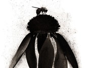 SALE : Honey Bee And The Coneflower - Charcoal Nature Drawing Print - Wall Art Featured In West Elm