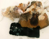 Mix of Natural Fur Pieces : Red Fox, Grey Fox, Beaver, Bobcat, Coyote, & More