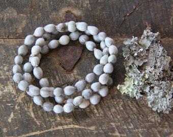African Imfibinga Beads / Natural Grey Seeds / 8x10mm / Tribal, Boho Fashion and Supplies / Zulu Tribe, South Africa