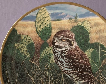 vintage Noble Owls of America collectible plate, Prairie Sundown 1986, bird collectible southwest decor, English plate