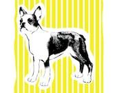 Boston Terrier Art Print  - Hand Printed