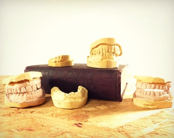 Genunie Plaster Mouth Castings