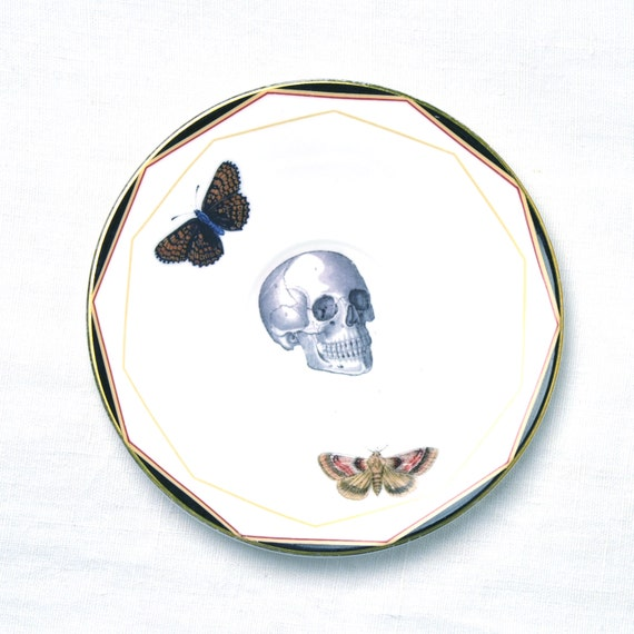 Skull, Butterfly & Moth Vintage China Tea Plate for wall art decorative display
