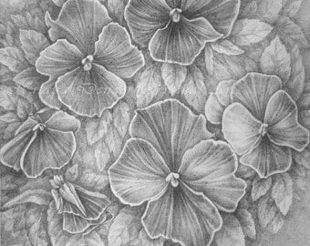 """Pensies, MATTED ORIGINAL Pencil Drawing, Pansy Flowers, Grey, Black Mat 12x12"""", Ready to frame, Woman, Gift, Special Gift"""