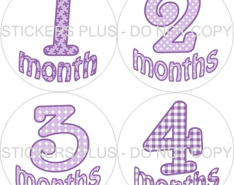 Monthly Baby Girl Stickers  Lavendar Lilac Purple  PRECUT Baby Stickers Baby Month Sticker Milestones Photo Prop