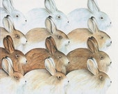 Vintage Print - Animals, Baby Decor, Nursery, Hares, Bunny, Bunnies - labiblioteca