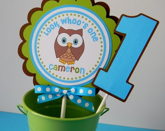 Look Whoo's ONE Birthday Party Smash Cake Topper - Blue and Green