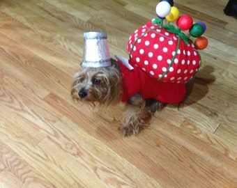 Special order handmade pet costume pin cushion