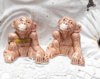 Monkey Mich Souvenir Shakers Scottsville Mich