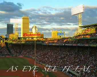 Fenway Park at sunset  photo card 5x7