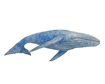 Whale Print  - Kids Wall Art - Ocean Nursery
