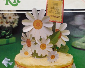 Cake Decorating Kit by Hallmark Daisy Day
