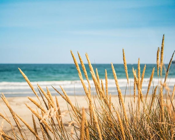 Coastal prints beach photography ocean beach by mylittlepixels for Golden beach design